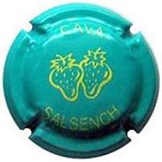 Salsench X-93191 V-26058